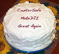 Name: coptersafe.jpg Views: 50 Size: 23.8 KB Description: