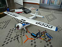 Name: P1100295.jpg