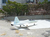 Name: P1050330.jpg Views: 258 Size: 301.3 KB Description: Out back on cement slab in the yard.