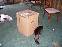 Name: P1050834.jpg