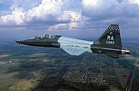 Name: 800px-T-38_560FTS_RandolphAFB_2001.jpg Views: 294 Size: 99.2 KB Description: