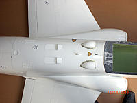 Name: hawk800-41.jpg