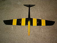 Name: pylon wings 059.jpg