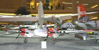 Name: Beau 01.jpg
