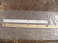 Name: DSC04761.jpg