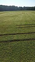 Name: Field_Damage02.jpg