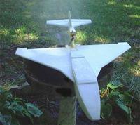 Name: takeoff.jpg Views: 3773 Size: 36.9 KB Description: tweety taking off.