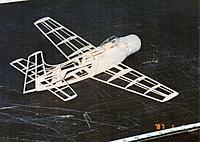 Name: Skyraider Bones 1995 4.jpg Views: 198 Size: 312.3 KB Description:
