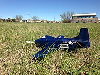 Name: 0222 Skyshark in the Grass.JPG