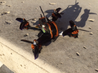 Name: Tyro 79 7.png