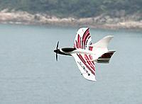 "Name: f1(7).jpg Views: 105 Size: 165.5 KB Description: the HK ""Wingnetic"""