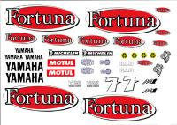 Name: Fortuna Yam.jpg