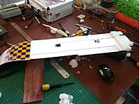 Name: Walrus Revamp 01.jpg