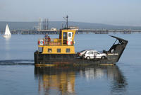Name: Cromarty Rose.jpg