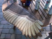 Name: 22 bottom feathers - more brown.jpg