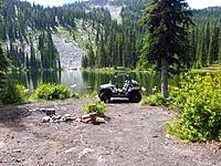 Name: Bombi_Frankpix_00 (1).jpg