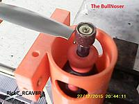 Name: BullNoser_ (3).JPG