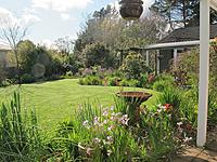 Name: Spring 1.jpg