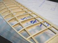Name: Outer wing.jpg