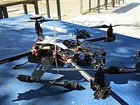Name: DAYA 550 IMG_0557.jpg
