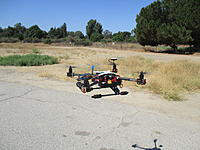 Name: DAYA 550 IMG_0558.jpg
