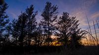 Name: sunset5.jpg Views: 86 Size: 794.6 KB Description: