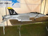 Name: CIMG0035.jpg Views: 93 Size: 112.4 KB Description: UN F-18 PINTADO DE JOLY ROGER