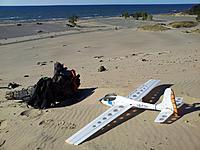 Name: 20131007_172341_S.jpg Views: 54 Size: 188.5 KB Description: Le Fish, Warren Dunes State Park, Michigan.