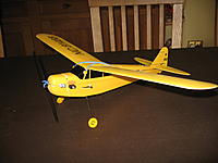 Name: Lee Piper Cub 002.jpg