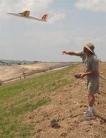 Name: IMG_1453 (Large).jpg