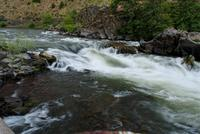 Name: DSC_0321_DxO_raw (Large).jpg