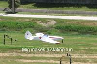 Name: Img_1748 (Large).jpg