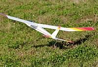 Name: DSC_2256_DxO_raw (Large).jpg Views: 130 Size: 135.4 KB Description: Wind starts to flip Buck's Spirit over on landing.