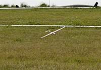 Name: DSC_2340_DxO_raw (Large).jpg Views: 121 Size: 132.0 KB Description: Charlie's D99 on landing.