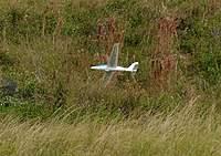 Name: DSC_6573_DxO.jpg Views: 105 Size: 138.9 KB Description: Oops, not a great landing.