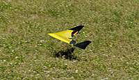 Name: DSC_6644_DxO.jpg Views: 104 Size: 94.6 KB Description: Jose's PD on landing.