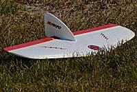 Name: DSC_6727_DxO (Custom).jpg Views: 105 Size: 126.7 KB Description: A Weasel at rest shows no movement............