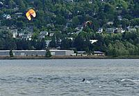Name: DSC_8125_DxO.jpg