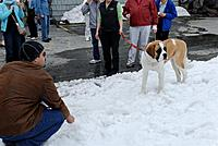 Name: DSC_8387_DxO.jpg