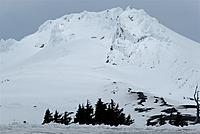 Name: DSC_8389_DxO.jpg