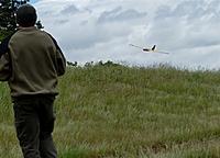 Name: DSC_8537_DxO.jpg Views: 139 Size: 117.1 KB Description: Gulp on landing.