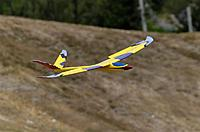 Name: DSC_8600_DxO.jpg Views: 179 Size: 65.4 KB Description: Mouton on landing, spoilerons out.