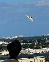Name: DSC_0168_DxO (Custom).jpg