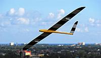 Name: DSC_0474_DxO (Custom).jpg Views: 100 Size: 54.1 KB Description: Falco on flyby.