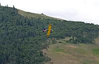 Name: DSC_2950_DxO (Custom).jpg