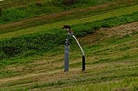 Name: DSC_3622_DxO (Large).jpg