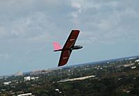 "Name: DSC_4761 (Large).jpg Views: 37 Size: 80.7 KB Description: Moth shows it's ""pink"" side."