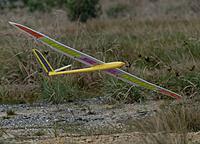Name: DSC_5113_DxO.jpg Views: 30 Size: 184.7 KB Description: Larry just scrapes his wingtip, as he lands his Enigma.