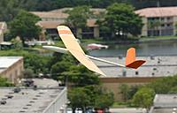 Name: D71_7888_DxO.jpg Views: 22 Size: 239.0 KB Description: Kit's Falco trying to catch a thermal.
