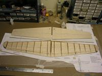 Name: KIwing06.jpg